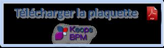 icone-pdf-bpm