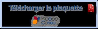 icone-pdf-conso